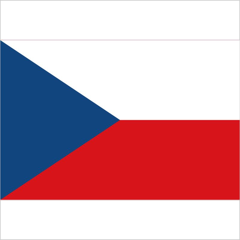 Купівля готової фірми в Чехії